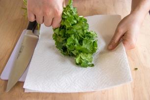cilantro chopping