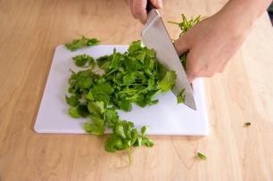 cilantro chopping-7229