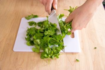 cilantro chopping-7230