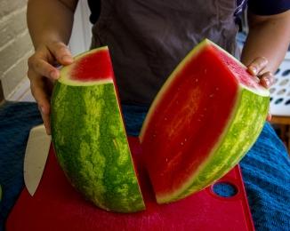 watermelon pops-7748