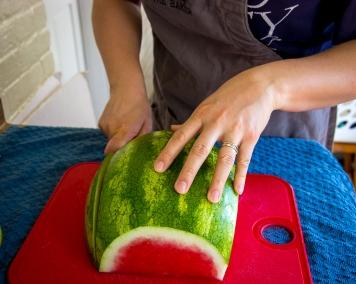 watermelon pops-7750