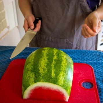 watermelon pops-7752